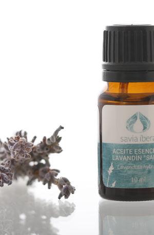 Aceite esencial lavandula hybrida saba 10ml